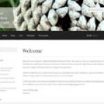 Web Design Portfolio - 025