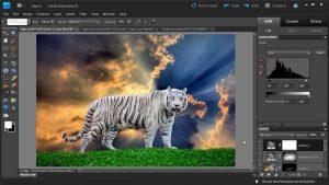 Photoshop Design Example